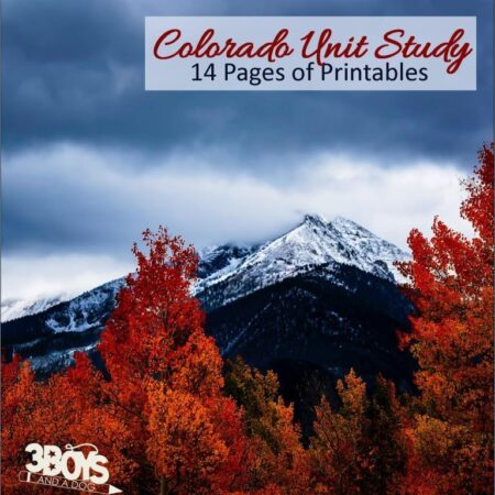 Colorado State Unit Study
