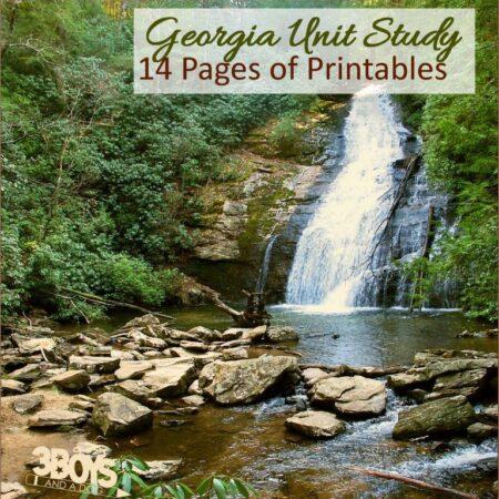 Georgia State Unit Study