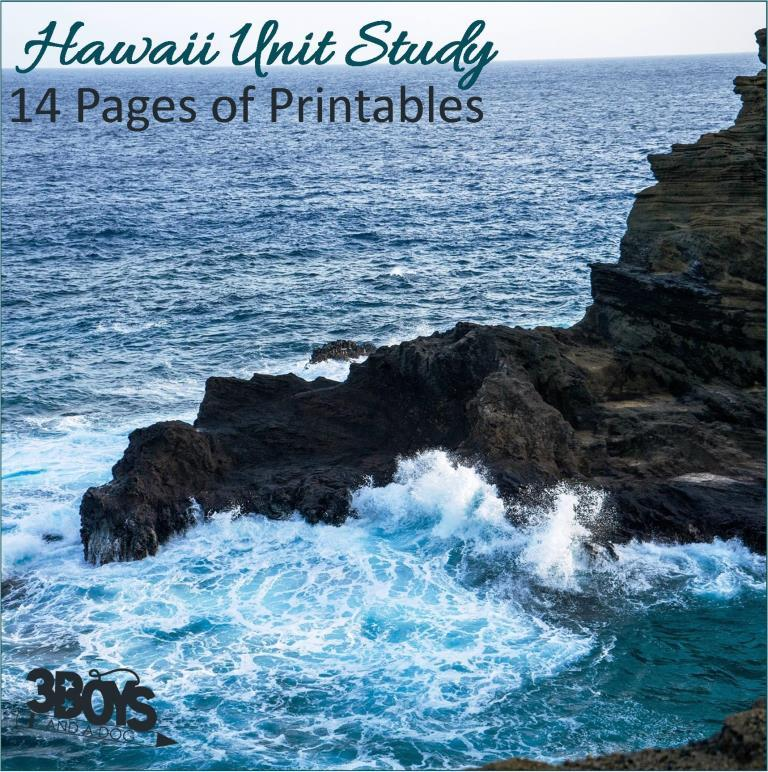 Hawaii State Unit Study