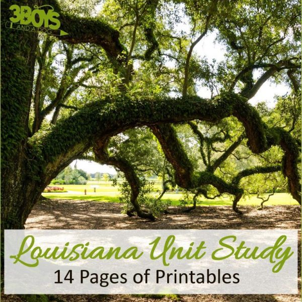 Louisiana State Unit Study