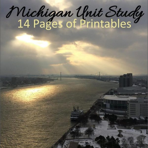 Michigan State Unit Study