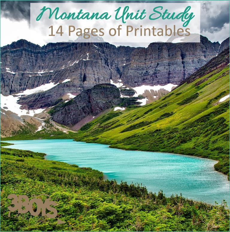 Montana State Unit Study