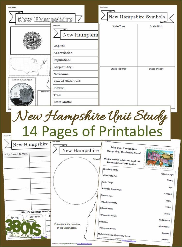 New Hampshire State Unit Study