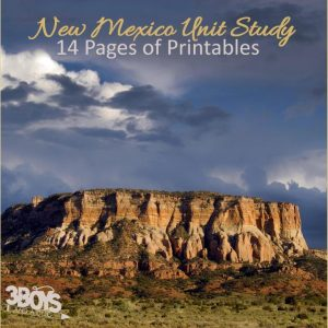 New Mexico State Unit Study