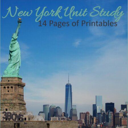 New York State Unit Study