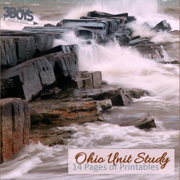 Ohio State Unit Study