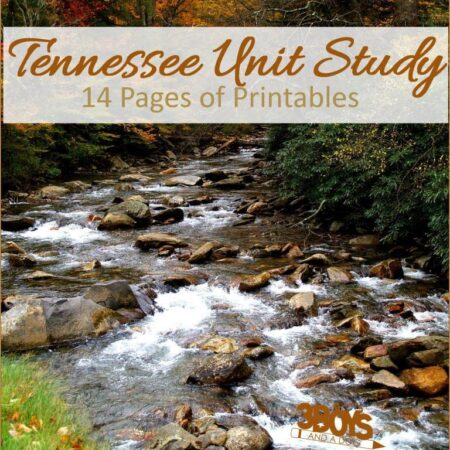 Tennessee State Unit Study