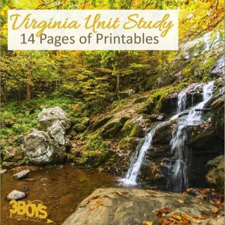 Virginia State Unit Study