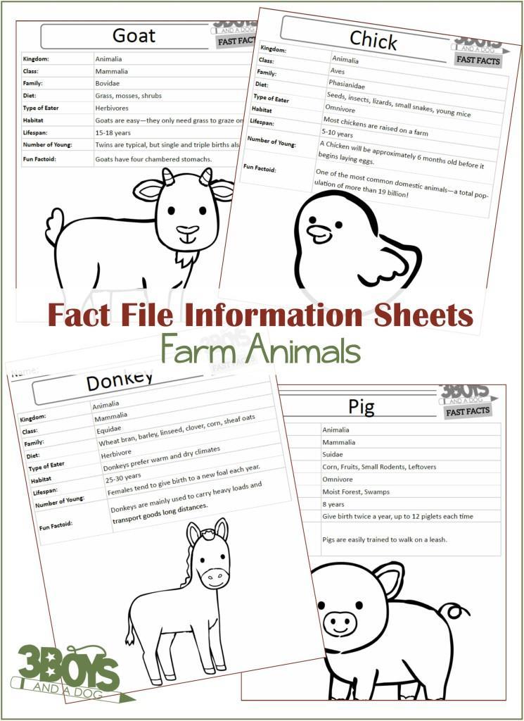 Farm Animals Fact Files