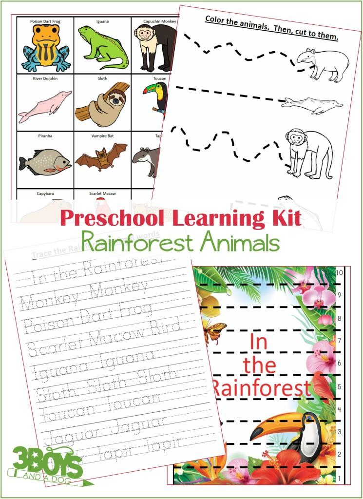 Preschool Learning Kit Rainforest Animals