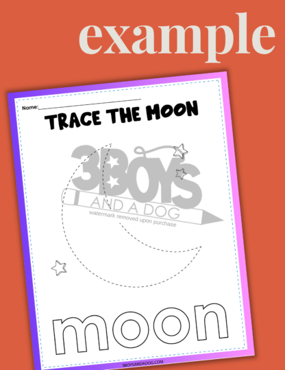 The Moon Activity Sheets