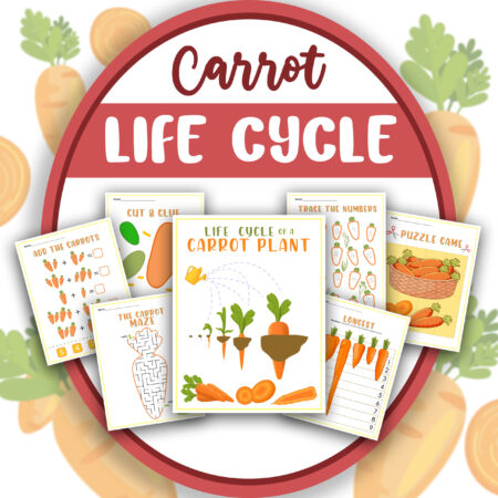 Learn About Carrots