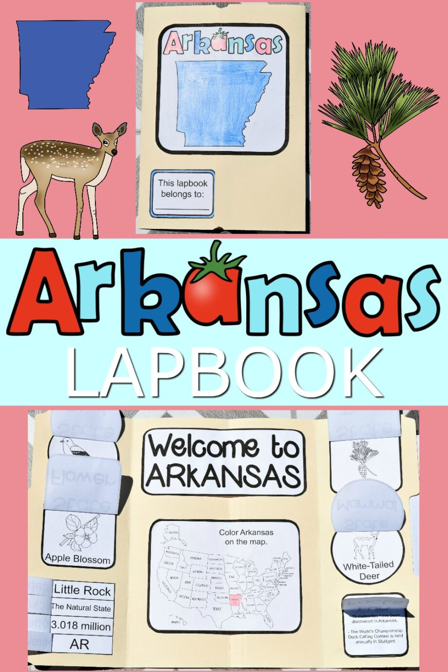 Arkansas Lapbook Elements